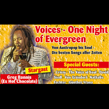 Voices - One Night of Evergreen WIEN - Tickets