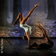 Acosta Danza . Carlos Acosta: A Celebration