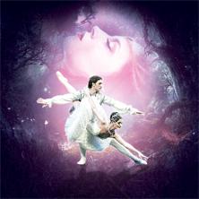 Gala-Matinee - Ein Best Of des klassischen Ballets
