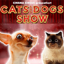 Cats and Dogs Show
