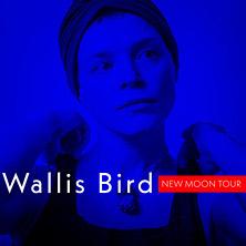 Wallis Bird in Wien, 26.10.2019 - Tickets -