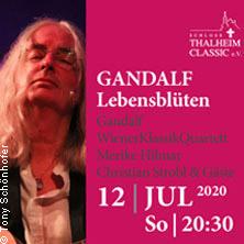 Sommerfestival La Rose - Gandalf - Lebensblüten